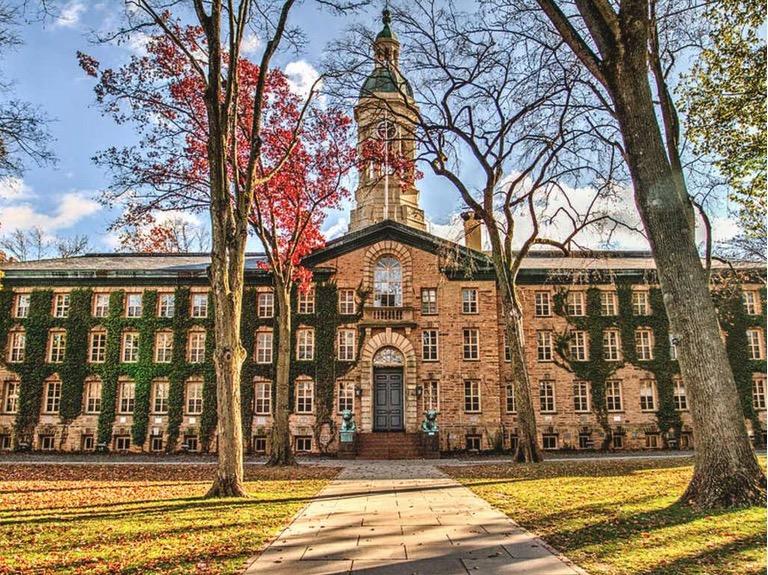 Princeton University Soilution System lesson